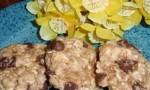 Chocolate Oatmeal Hermits