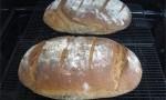 Authentic German Bread (Bauernbrot)