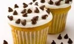 Mini Chip White Cupcakes