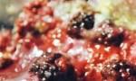 Blackberry Cobbler Delight