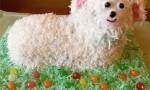 Coconut Lamb Cake