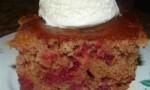 Cherry Nut Cake I