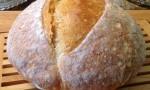 No Knead Holiday Pumpkin Bread