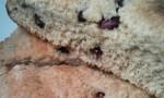 Whole Wheat Pomegranate Scones